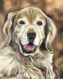 """Beau"" 2018 - Oil on 16x20 canvas board"